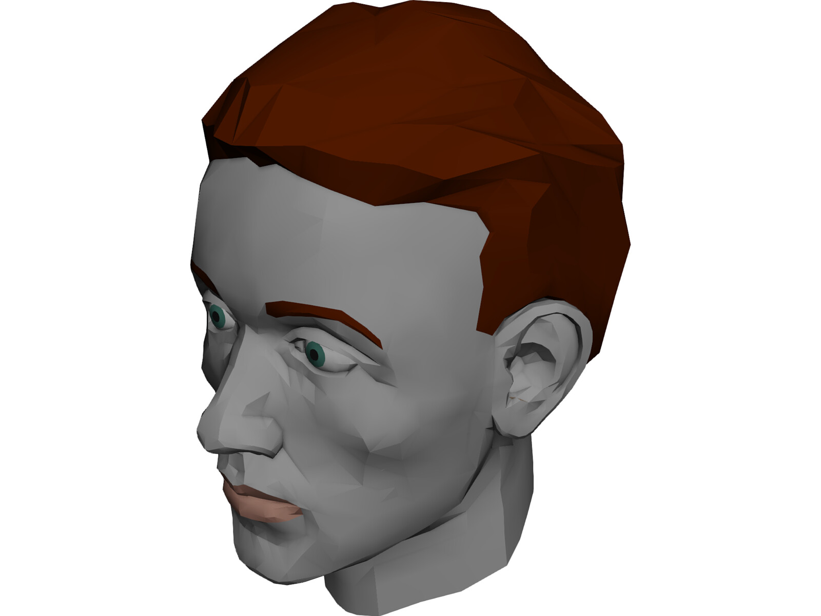 Face muscles and head 3d model 3d cad browser for 3ds max face modeling