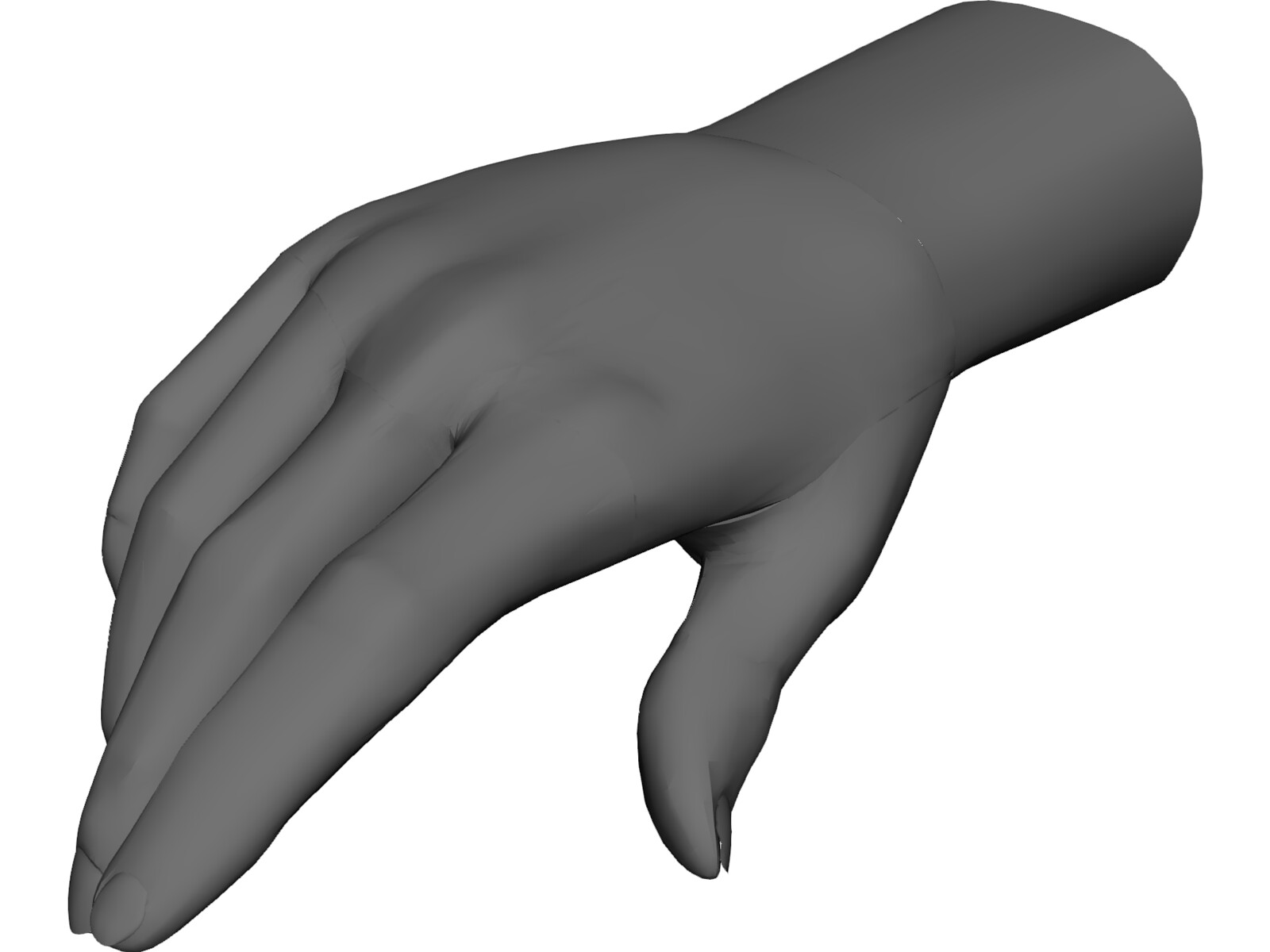 Hand Male [NURBS] 3D Model