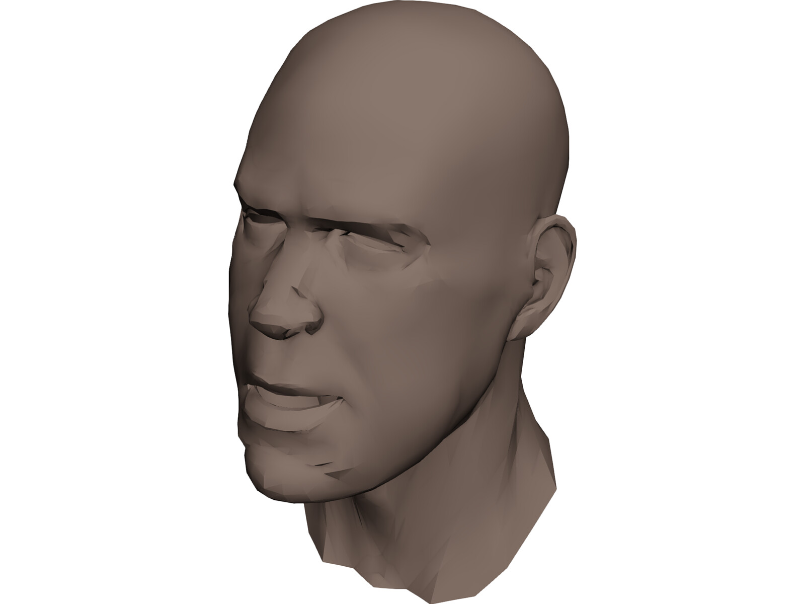 Human head face 3d model 3d cad browser for 3ds max face modeling