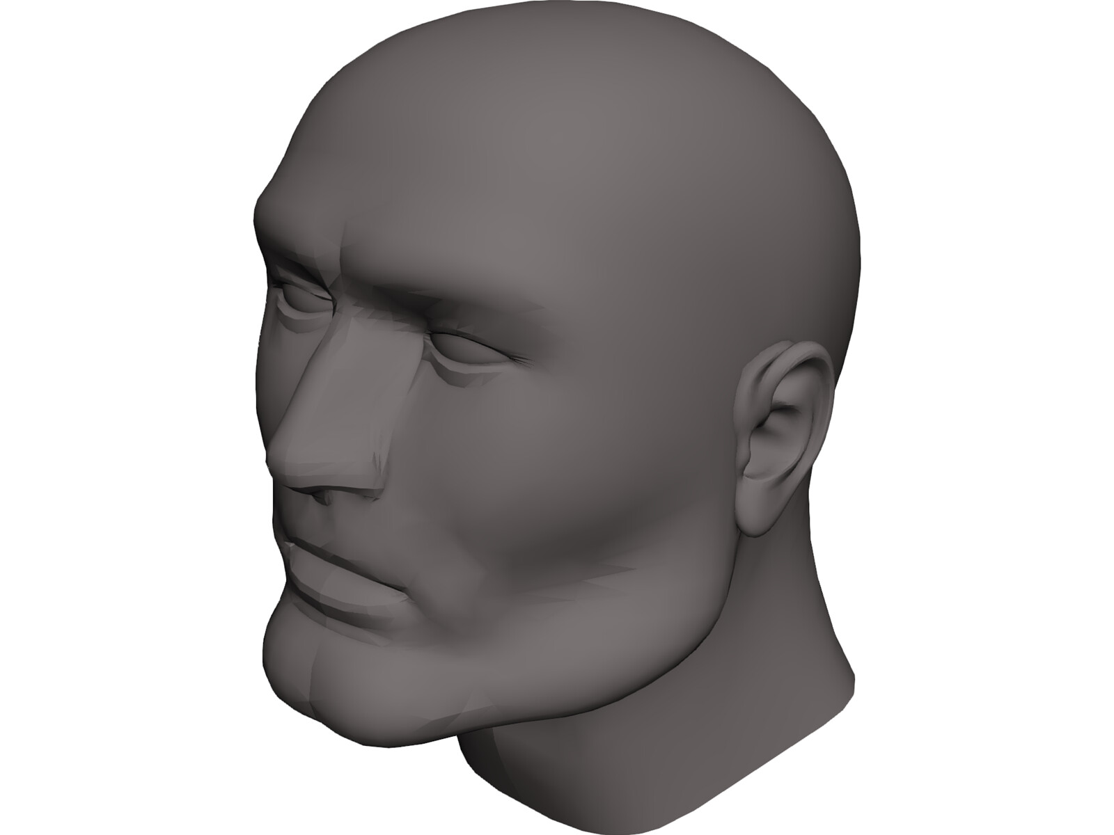 Head Male 3D CAD Model