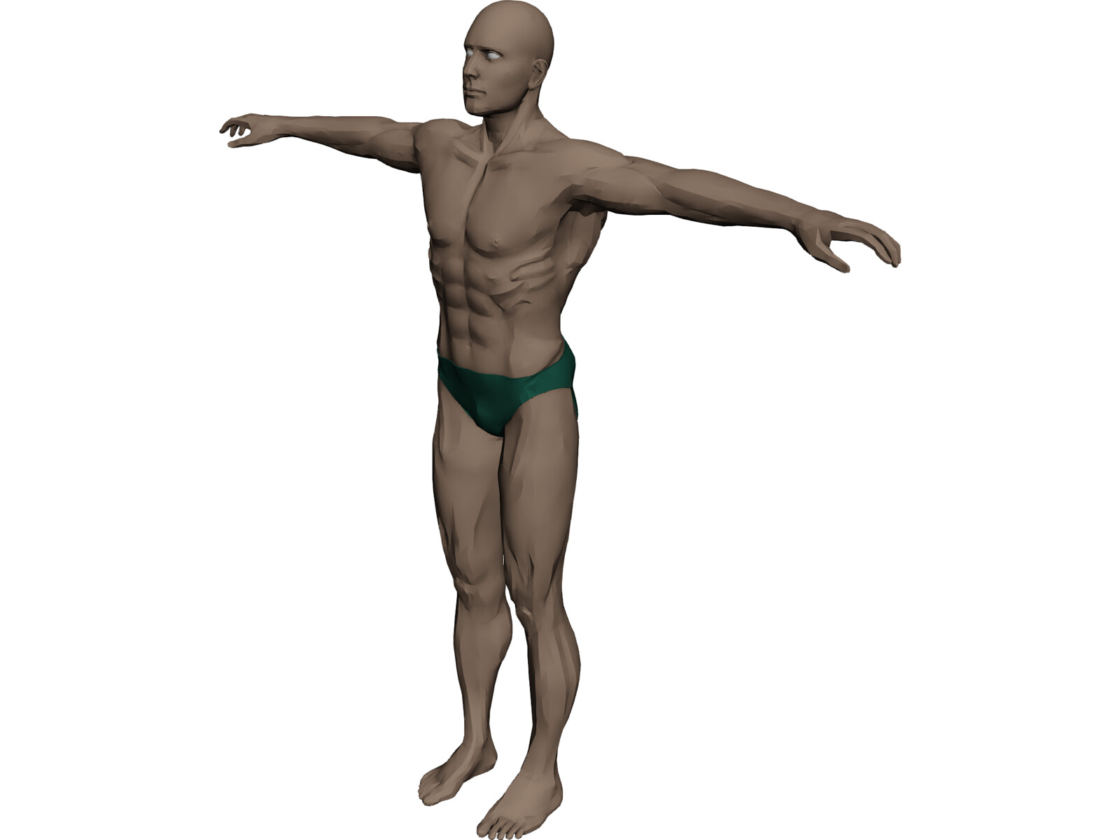 Swimmer Athlete 3D Model