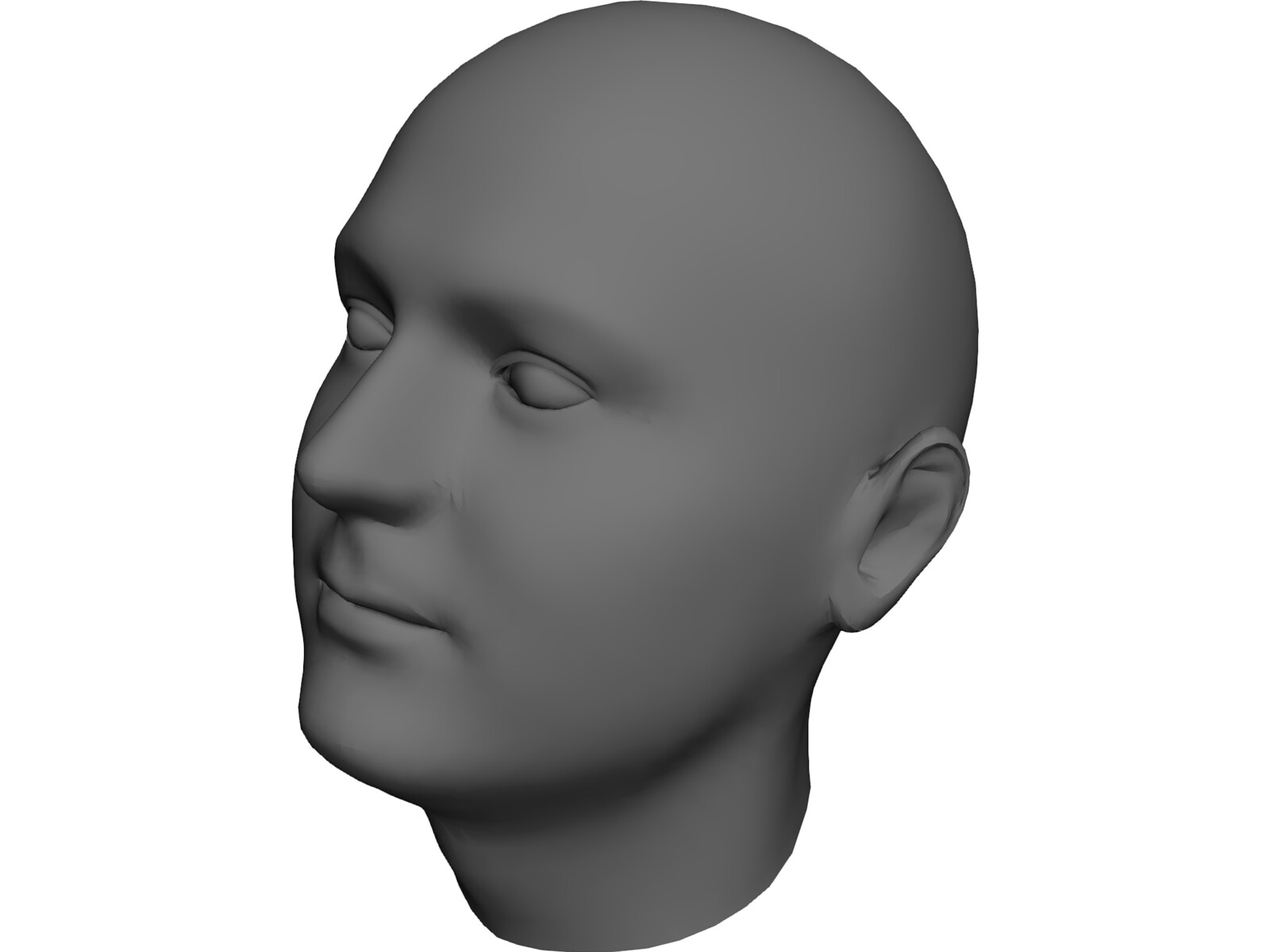 Image result for human head