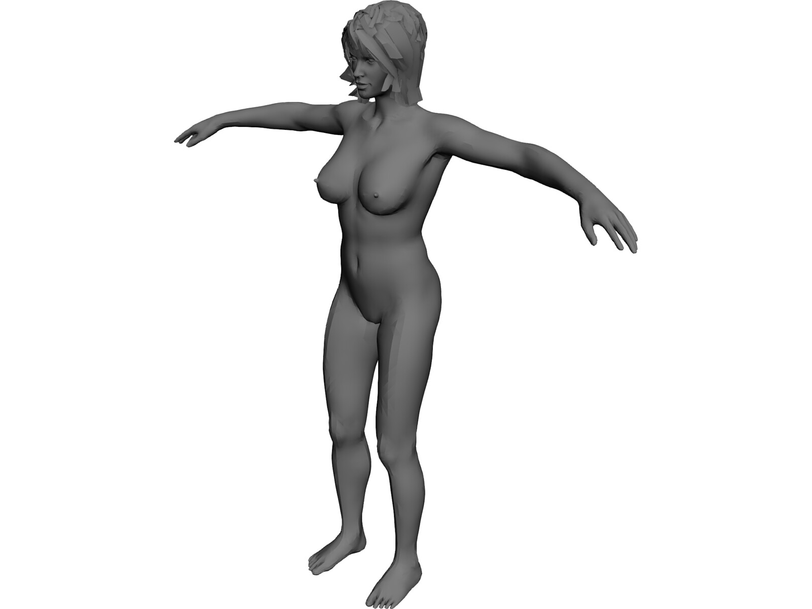 Female Anatomy Complete 3D Model - 3D CAD Browser