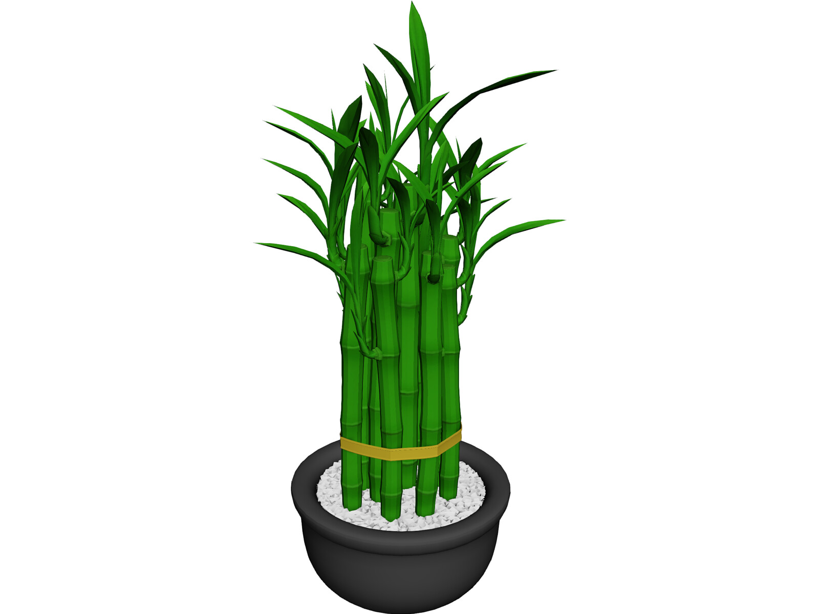 Lucky Bamboo 3D Model - 3D CAD Browser
