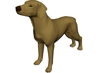 Dog Braco 3D Model 3D Preview