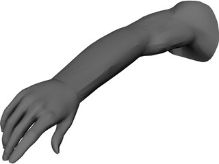 Arm Male CAD 3D Model