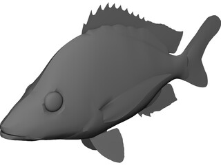 John Dory Type Fish 3D Model 3D Preview