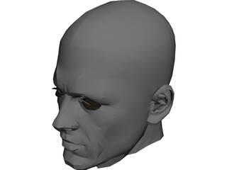 Male Adult Head  3D Model