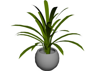 Plant in Pot 3D Model 3D Preview