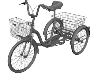 Three-wheeled Bicycle 3D Model