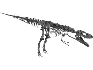 Gorgosaurus Skeleton 3D Model