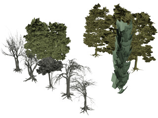 Tree Collection 3D Model