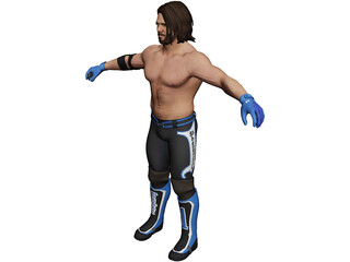 Aj Styles Fighter 3D Model