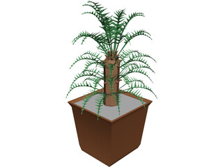 Cica Palm Tree with Sisal Vase 3D Model