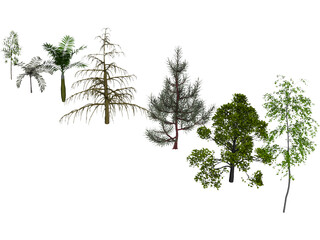 Trees Pack 3D Model 3D Preview