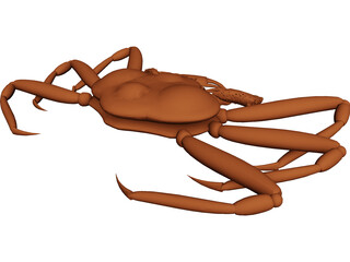 King Crab 3D Model 3D Preview