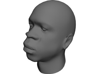 Head African Male 3D Model 3D Preview