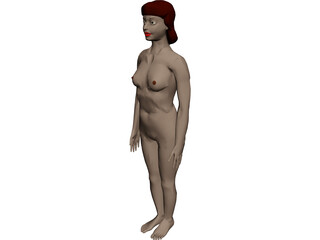 Woman [+Internal Organs] 3D Model