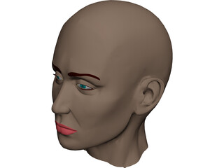 Head Female 3D Model