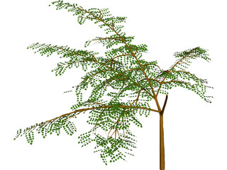 3D Tree Plant Models - 3D CAD Browser