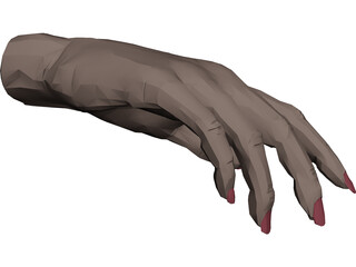 Hand Female 3D Model 3D Preview