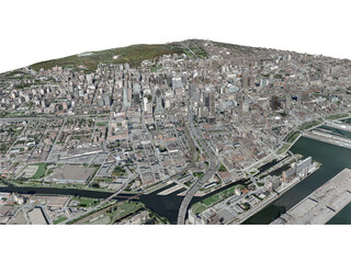 Montreal City 3D Model
