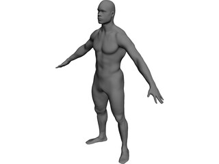 Man Body International CAD 3D Model
