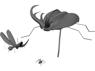 Insects 3D Model