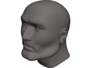Head Male CAD 3D Model