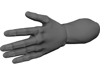 Hand Male 3D Model 3D Preview