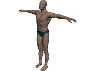 Swimmer Athlete 3D Model 3D Preview