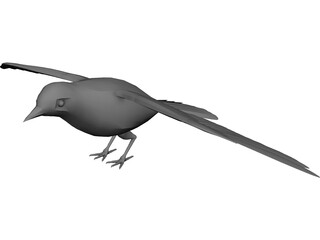 Dove Rock Pigeon 3D Model