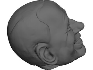 testa di Berlusconi Head 3D Model 3D Preview