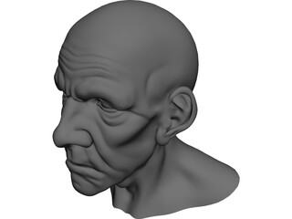 Man Head Old 3D Model
