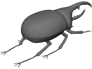 Hercules Beetle 3D Model