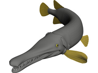 Alligator Gar (Atractosteus Spatula) 3D Model
