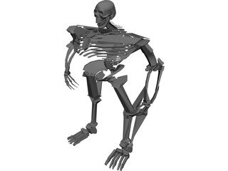 Warrior Skeleton 3D Model