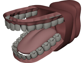Mouth 3D Model