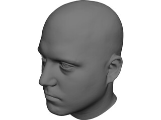 Human Male Scanned Head 3D Model 3D Preview