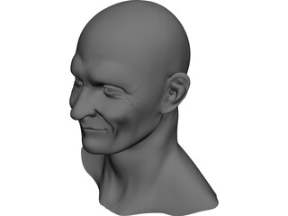 Old Man Face 3D Model