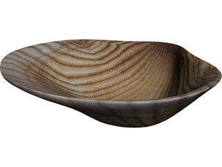 Sea Shell 3D Model 3D Preview