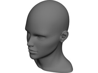 Human Head and Neck CAD 3D Model