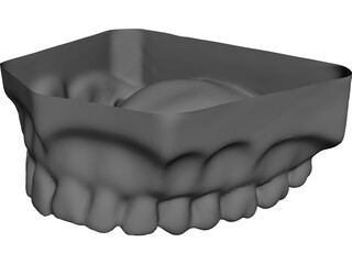 Teeth Upper Surface CAD 3D Model