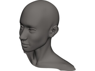 Head Female CAD 3D Model