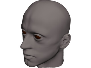 Man Head 3D Model 3D Preview
