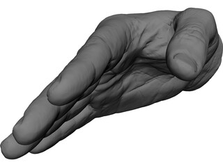Right Hand Male 3D Model
