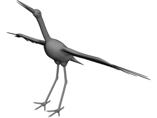 Ciconia Stork 3D Model