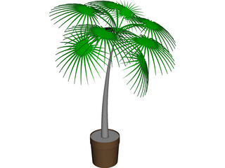 Palm Tree Plant CAD 3D Model