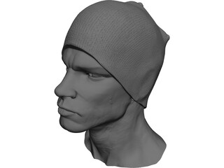 Head for Printing Decimated 3D Model