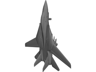F-14 Tomcat Fighter 3D Model